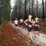 Trailrun 2013 Stage announced
